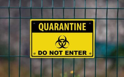 Don't quarantine your brand